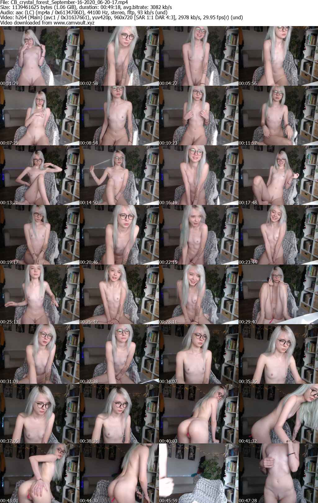 Video preview for model crystal_forest